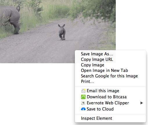 Image Uploader in action! Choose Save to Cloud